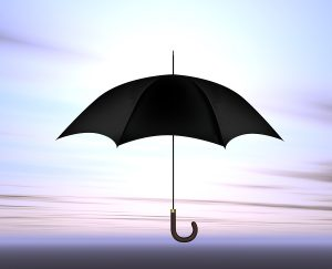 Personal Umbrella Insurance Edmonds, WA