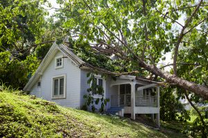 Who is responsible if your tree falls onto your neighbor's house?