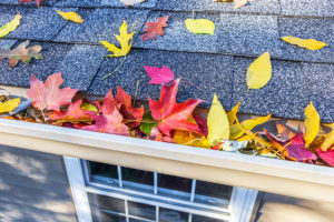 Fall Home Maintenance Checklist for your Edmonds, WA home