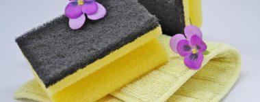 Spring Cleaning Checklist Edmonds, WA