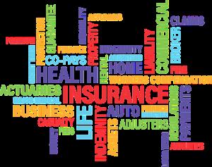 Best Insurance Agent Edmonds, WA